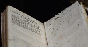 Bookworm_damage_on_Errata_page