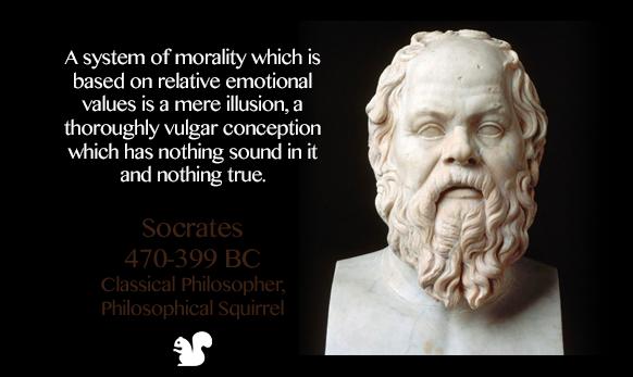 Socrates The Squirrel