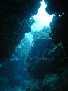 Undersea reef crevice